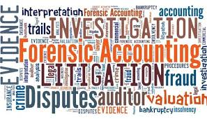 Training Forensic Auditing Understanding for Fraud Investigation