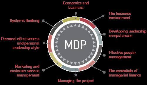 Marketing Manager Development Program (MMDP)