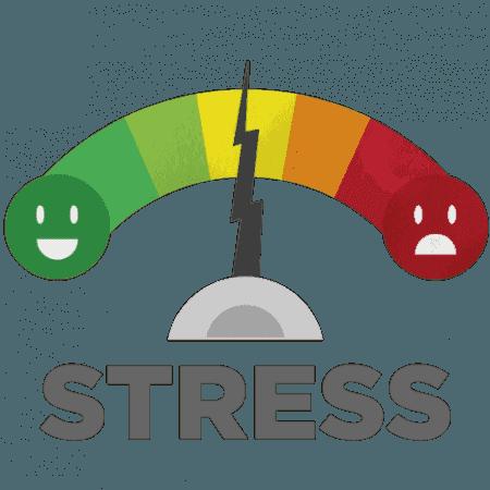 PELATIHAN MEMANAGE RESIKO LIKUIDITAS DAN STRESS TEST