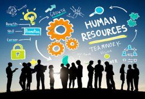PELATIHAN HUMAN RESOURCE MANAGEMENT (MANAJEMEN SUMBER DAYA MANUSIA)
