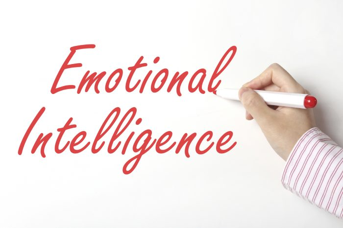 TRAINING EMOTIONAL INTELLIGENCE (PENGEMBANGAN DIRI)