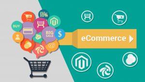 Training e-Commerce Consultant